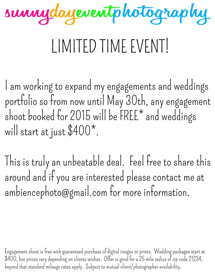 2015WeddingEngagementPromo