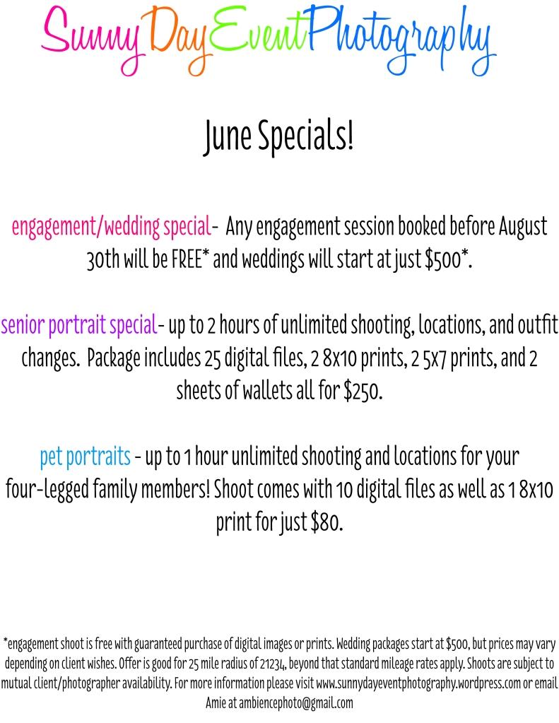 June thru Aug special _ EngagementWeddingSrPortPet